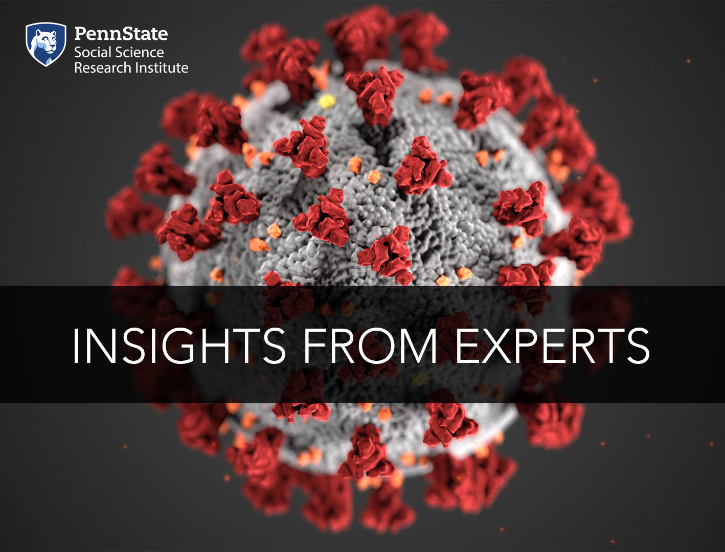 Insights from Experts graphic