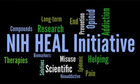 """Word map with """"NIH Heal Initiative"""" and therapies, compounds, long-term, research, scientific, opioid, addiction, pain, and other words."""