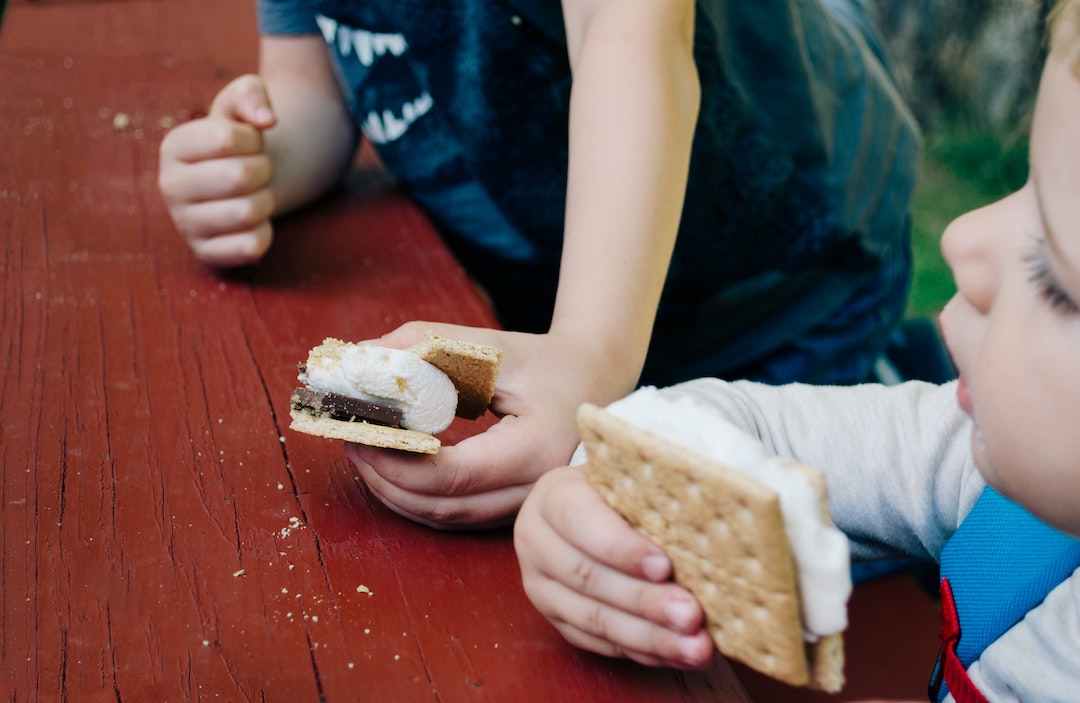 Two youngh children eating smores