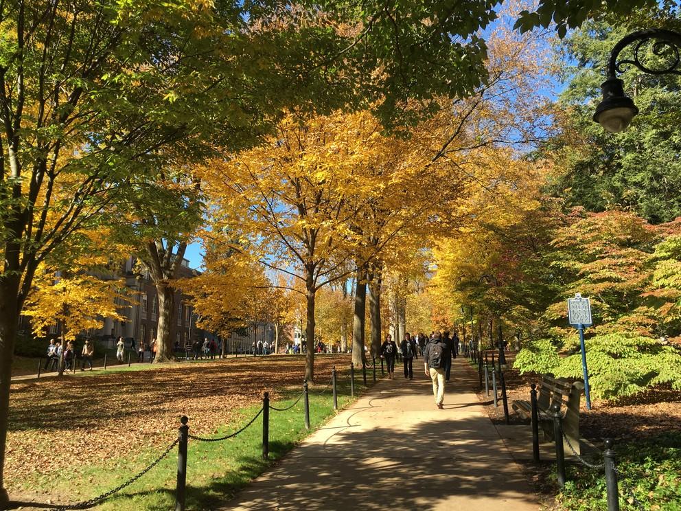 Fall scene on campus.